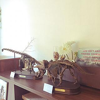 リビング/恐竜/模型のインテリア実例 - 2017-07-22 05:52:11