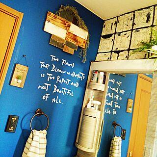 バス/トイレ/DIY/壁紙DIY/壁紙屋本舗/水性ペンキ...などのインテリア実例 - 2017-01-23 21:12:09