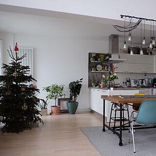 クリスマスツリーの人気の写真(RoomNo.2209726)