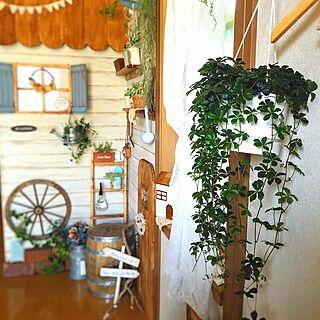 板壁DIYの人気の写真(RoomNo.2743636)
