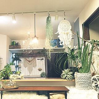 キッチン/ボタニカルスタイル/植物のある暮らし/Botanical Style/観葉植物のある暮らし...などのインテリア実例 - 2018-02-03 17:22:30
