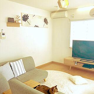 女性家族暮らし、調光ロールスクリーンに関するYumiさんの実例写真