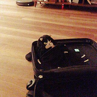 部屋全体/スーツケース/雑貨/北欧/カフェ風...などのインテリア実例 - 2015-10-28 23:22:33