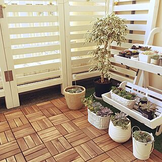 玄関/入り口/多肉植物/観葉植物/DIY/カフェ風...などのインテリア実例 - 2017-01-01 01:17:04