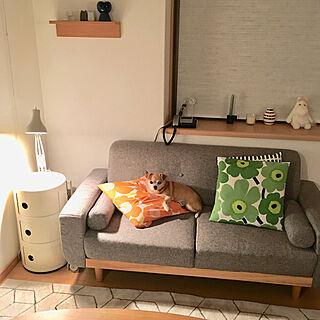 女性40歳の家族暮らし4LDK、関節照明に関するharitakaさんの実例写真