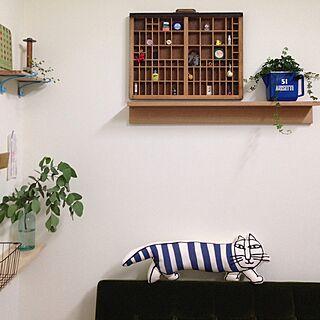 棚/白い壁/フレンチキーリング/糸巻き/グリーンのある暮らし...などのインテリア実例 - 2016-06-01 23:07:20