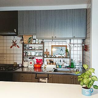 女性家族暮らし3LDK、NO GREEN NO LIFE コンクリート鉢に関するsakusakuさんの実例写真