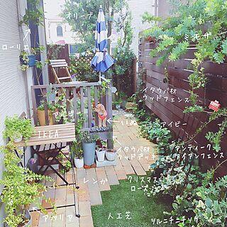 リビング/ウッドフェンス/庭/グリーンのある暮らし/外構...などのインテリア実例 - 2016-09-13 20:15:19