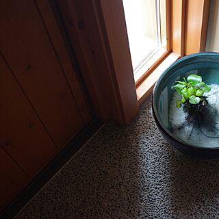 家族暮らし、三和土に関するsugomoliさんの実例写真