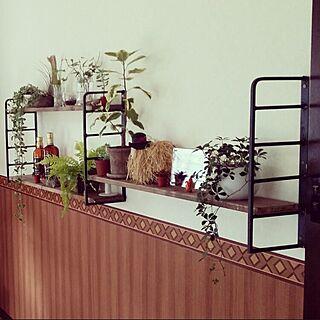 男性の、3LDK、家族住まいの「壁/天井」についてのインテリア実例