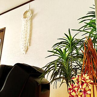 バリ島の人気の写真(RoomNo.3201103)