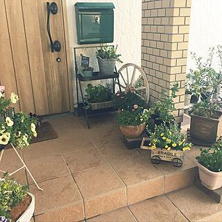 女性家族暮らし、植木鉢リメイクに関するmamaさんの実例写真