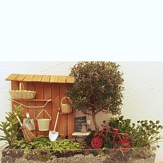 バス/トイレ/観葉植物/ジオラマ/ミニチュア/箱庭...などのインテリア実例 - 2016-09-30 07:58:10