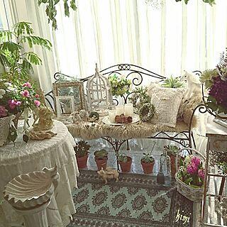 観葉植物のある部屋の人気の写真(RoomNo.2223928)