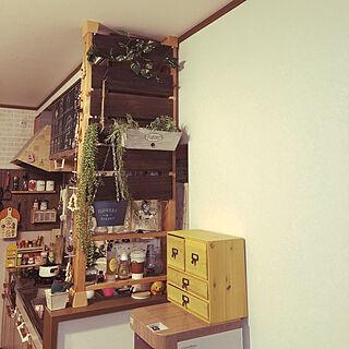 、ダイソーサボテンに関するawig-keitさんの実例写真