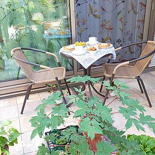 玄関/入り口/植物が好き/植物のある暮らし/花が好き/タイルテラス...などのインテリア実例 - 2021-05-04 11:55:16