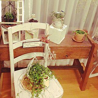 、室内ガーデンに関するさんの実例写真