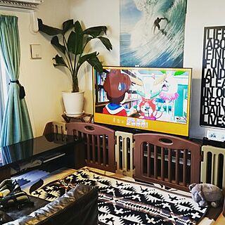 女性36歳の家族暮らし4LDK、ペンドルトン ウールブランケットに関するTomokoさんの実例写真