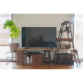 ウンベラータ/観葉植物のある部屋/観葉植物のある暮らし/観葉植物/テレビ周り...などのインテリア実例 - 2020-08-29 09:17:19