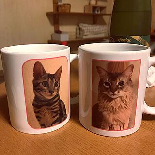 もったいなくて使えない♡/マグカップ/ベンガル/ソマリ/猫と暮らすマンション...などのインテリア実例 - 2019-11-29 22:02:23