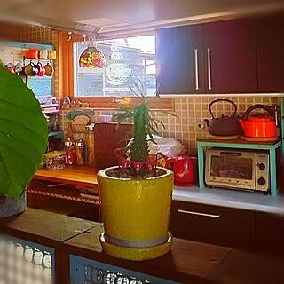 棚/賑やかな家/二世帯住宅の二階/三姉妹の母/colorful...などのインテリア実例 - 2017-05-12 08:38:18