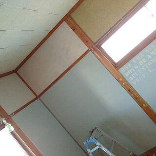 男性の、4K、家族住まいの「壁/天井」についてのインテリア実例