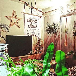 部屋全体/クリスマス/手書き/DIY/ドラセナ...などのインテリア実例 - 2017-11-29 20:07:21