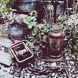 庭の人気の写真(RoomNo.3003484)