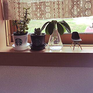 女性家族暮らし、スタバプリンカップに関するYukiさんの実例写真
