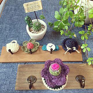 キッチン/編み物クラブ☆/編み○○ちゃん♡/NO GREEN NO LIFE/観葉植物のインテリア実例 - 2017-03-25 06:54:45