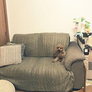 、犬のいた暮らしに関するmymr113さんの実例写真