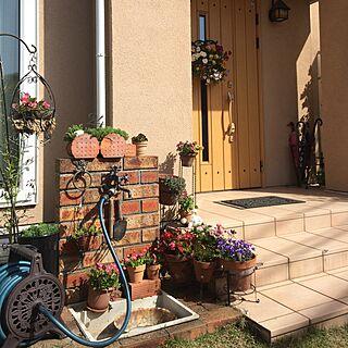机/みどりのある暮らし/庭/植木鉢/花のある暮らし...などのインテリア実例 - 2017-05-09 08:31:26