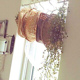 女性家族暮らし3LDK、3コインズのカーテン♡に関するerinkoさんの実例写真