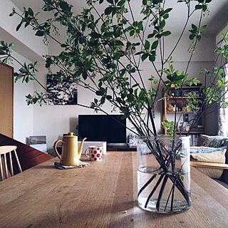 部屋全体/ドウダンツツジの枝/ドウダンツツジ/緑のある暮らし/北欧...などのインテリア実例 - 2016-05-08 18:17:05
