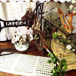 女性家族暮らし3LDK、ドライリース作成中に落ちた破片が愛おしいに関するna-chanさんの実例写真