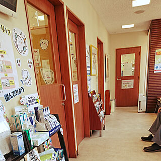 部屋全体/モニカ/治療中/腎臓、爪の炎症、緑内障/獣医さんにて...などのインテリア実例 - 2018-02-09 11:42:23