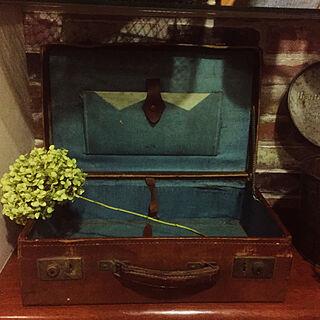 男性47歳の一人暮らし、アンティーク スーツケースに関するandronさんの実例写真