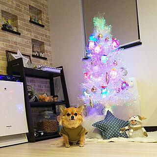 リビング/クリスマス/雑貨大好き♡/クリスマスイルミネーション✨/クリスマスディスプレイ...などのインテリア実例 - 2017-12-02 16:37:04