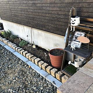 DIY/花壇/ピンコロ石/春支度/イベント参加...などのインテリア実例 - 2021-04-26 18:31:16