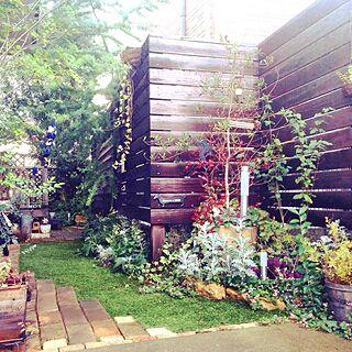 女性家族暮らし2LDK、ガーデンプレート手作りに関するrisaさんの実例写真