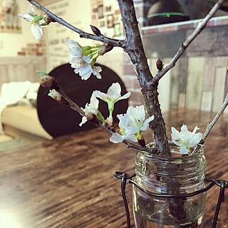 男性家族暮らし3LDK、桜のリメイクシートに関するtomoさんの実例写真