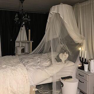 Bedroomの人気の写真(RoomNo.2447883)