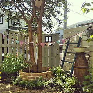 玄関/入り口/レンガ/記念樹/オリーブ/オリーブの木...などのインテリア実例 - 2018-04-26 10:00:37