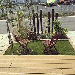 菊/花壇/人工芝/ガーデンチェア/庭...などのインテリア実例 - 2019-05-12 10:32:10