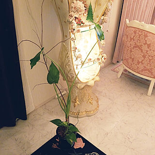 女性、観葉植物に関するyokoさんの実例写真