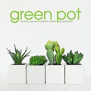 棚/my/観葉植物/グリーン/ブログUPしましたのインテリア実例 - 2014-04-10 17:43:52