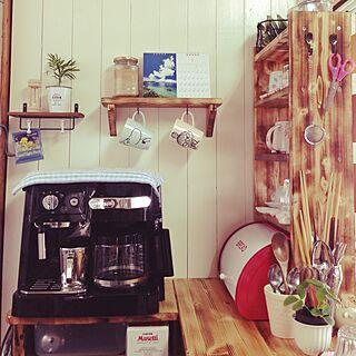 キッチン/カウンター上/植物/DIY/板壁DIY!...などのインテリア実例 - 2015-01-16 15:04:46