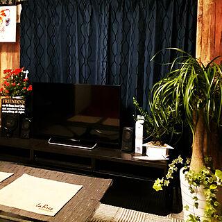 男性一人暮らし2DK、Overview 観葉植物に関するyuuki881さんの実例写真