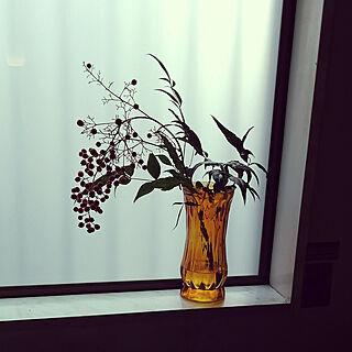 南天/庭のある暮らし/庭/花瓶/アンバーガラス...などのインテリア実例 - 2018-11-05 07:13:02