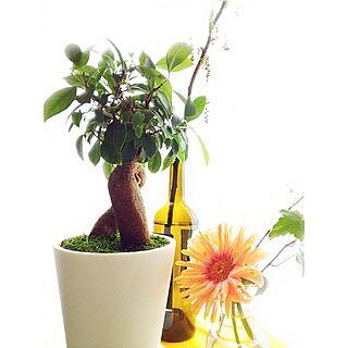 、お花のある生活✿に関するさんの実例写真